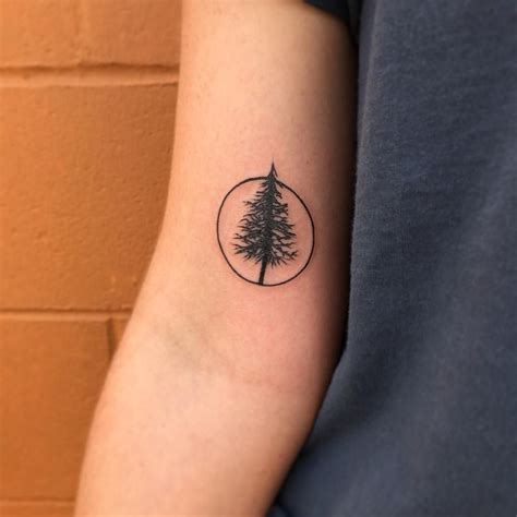 simple tree tattoo designs best 25 pine tree ideas on tree