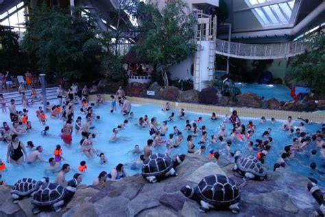 piscine à vague Photo de Sunparks Kempense Meren, Mol TripAdvisor