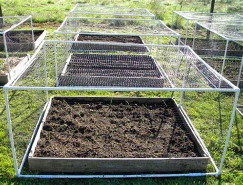 vegetable garden netting frame garden net frames redmon woods capper s farmer