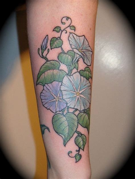 morning glory tattoo designs 17 best images about on vine