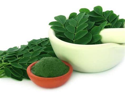 Nulife Green Coffe Nulife Moringa Nulife Detox Tea nulife moringga minuman antioksidan terbaik untuk mencegah
