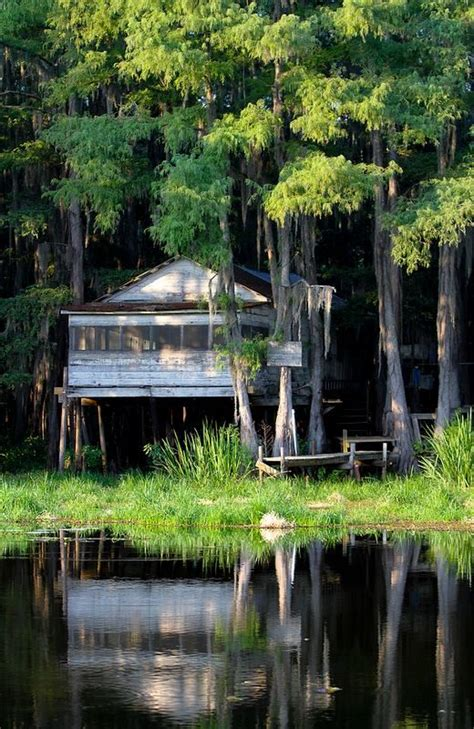 Caddo Lake Cabins by Caddo Lake Cabin Cabin Dreams