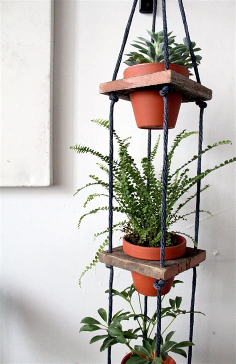 hanging pot indoor hanging potted plants gardening forums