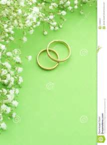 wedding invitation background 31 wedding invitation background pictures vizio wedding