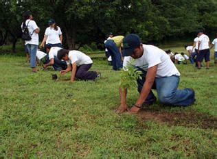 imagenes niños sembrando plantas colegios de honor