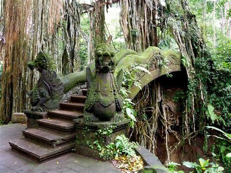 ado   sacred monkey forest sanctuary