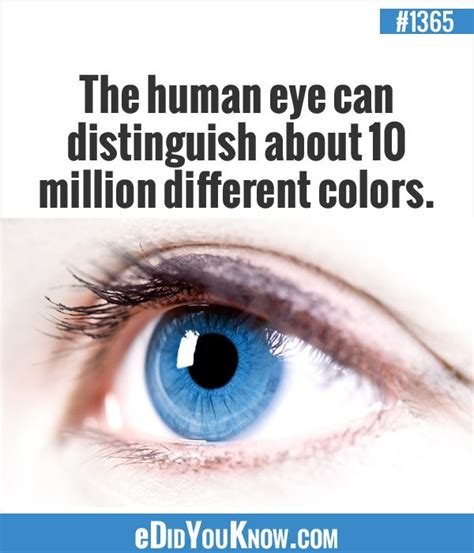 facts about eye color 7 facts about the human that you didn t
