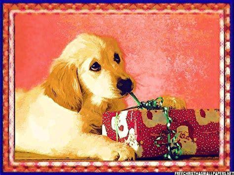 Dog Wallpapers Wallpaper Cave | christmas dog wallpapers wallpaper cave