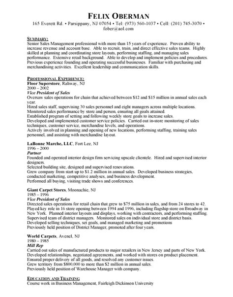 vp sales resume sles