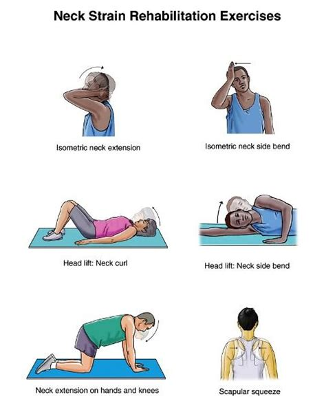 25 best ideas about isometric exercises on planks plank fitness and planks for abs