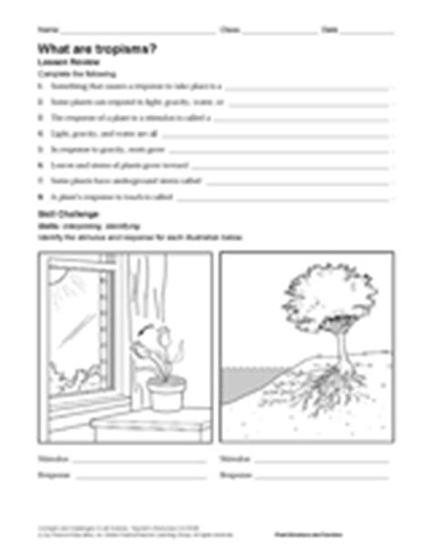 Stimulus And Response Worksheet Answers by What Are Tropisms Science Printable Grades 6 12