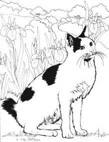 Coloriage Chat Les Beaux Dessins De Animaux 224 Imprimer