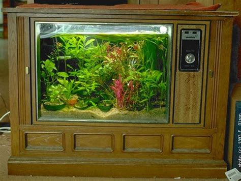 Tv Aquarium how to make an aquarium out of an television apartment therapy