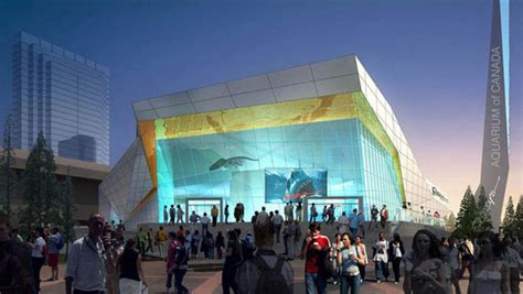 aquarium design toronto memo from toronto people are talking about projects