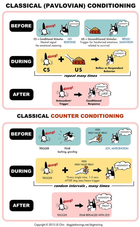 1000 images about psychology classical conditioning on