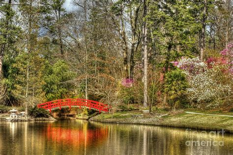 p duke gardens photograph by benanne stiens