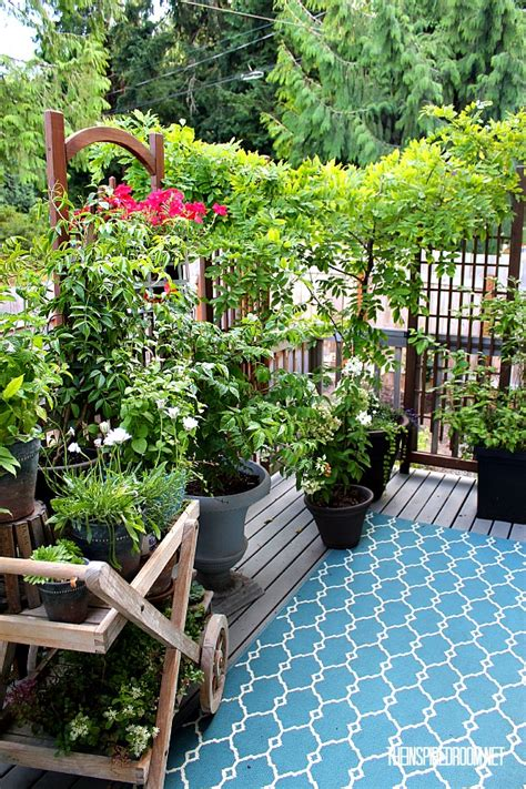 Deck Plants by My Small Backyard Deck Makeover Before After The