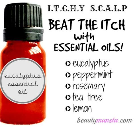 essential for itching 25 best ideas about itchy on