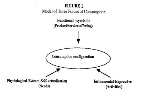 pattern of consumption meaning constellations configurations and consumption towards a