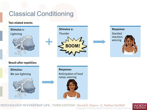 learning how do we learn classical conditioning operant