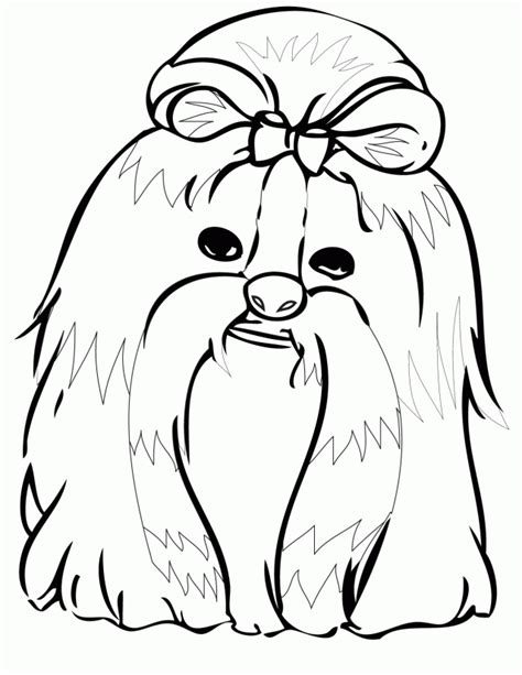 shih tzu pictures to print shih tzu coloring pages az coloring pages