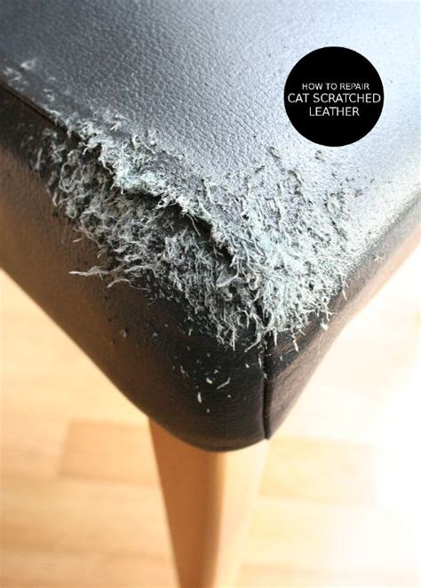 my cat scratched my leather couch 75 best images about furniture repair on pinterest