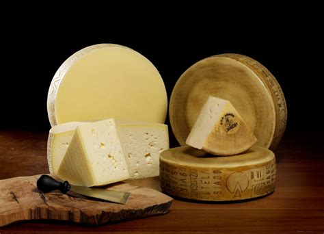 asiago cheese suppliers pictures product info
