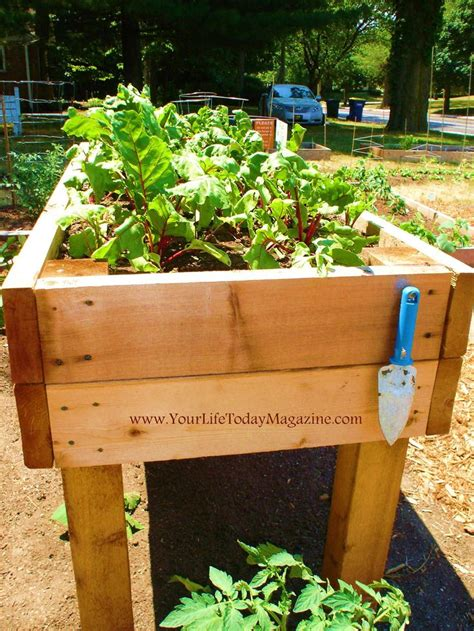 raised garden bed with legs raised garden beds on legs improvement stores now carry