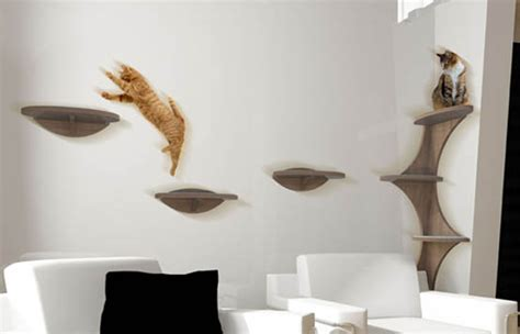 floating shelves for cats floating shelf