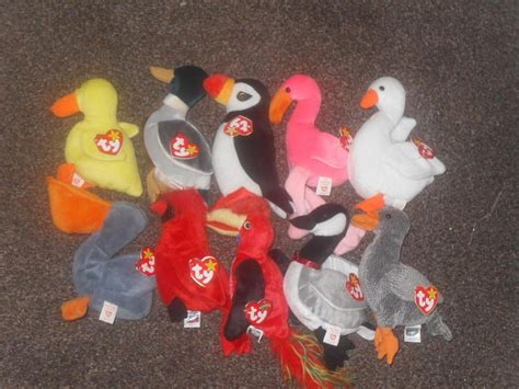 most wanted ty beanie babies ty beanie babies 1 50 each or 10 for 163 10 sedgley dudley