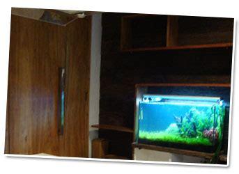 Termometer Buat Aquarium trik merawat ikan hias untuk akuarium