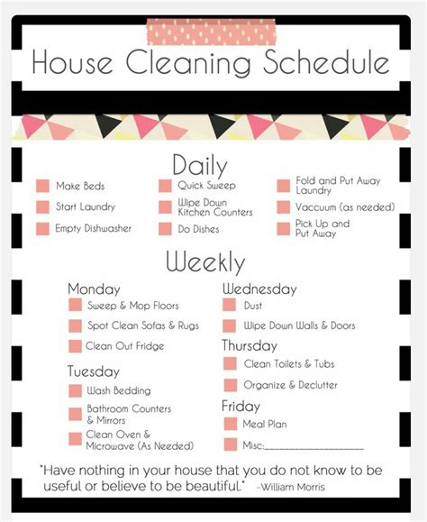 house cleaning schedule a girl and her white dog