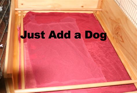 rottweiler whelping box german rottweilers whelping boxs puppy stuff