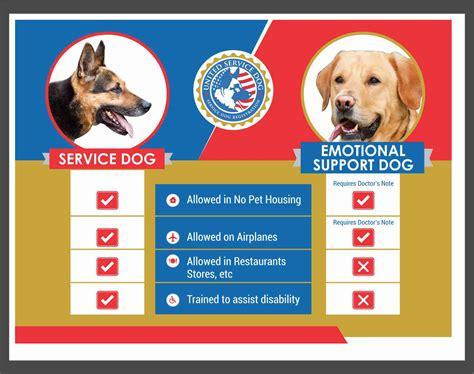 emotional service emotional support dogs service registration emotional support animals