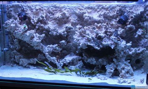 Folie Aquarium Kleben by Aquarium Folie Selbstklebend Zuhause Image Idee