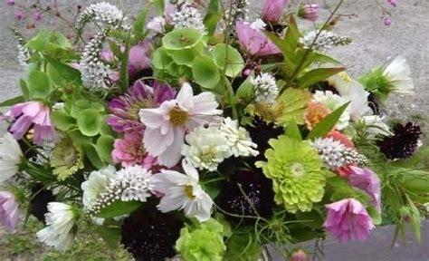 conservazione fiori recisi fiori freschi regalare fiori