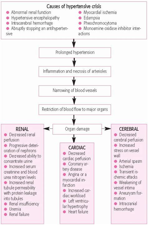 Icu Description by Cardiothoracic Icu Resume