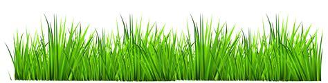 grass clipart free blue iris lawn care
