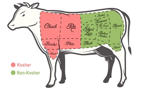 why is only half of a cow kosher judaism
