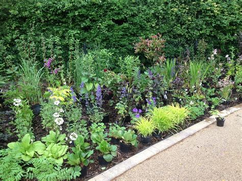 Garden Border Planting Ideas Planting A Large Front Garden Flower Bed Landscape Garden Designers Reading Berkshire Pete