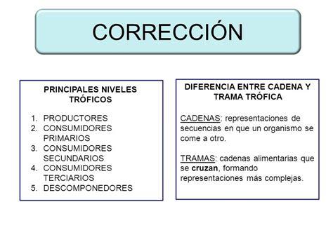 cadena alimentaria y red trofica diferencia diferencia entre cadena y trama tr 211 fica principales