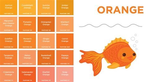 shades of orange color chart http www bing com images search q pantone color chart