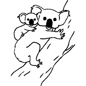 Paddington Bear Colouring Sheet Koala Template