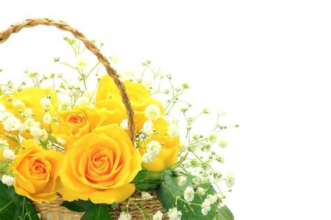 imagenes de flores gratis tarjetas de flores para