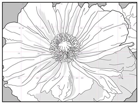 O Keeffe Coloring Pages by O Keeffe Skull Coloring Pages Crokky Coloring
