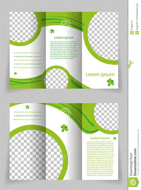 green brochure layout vector vector brochure template design with green element stock