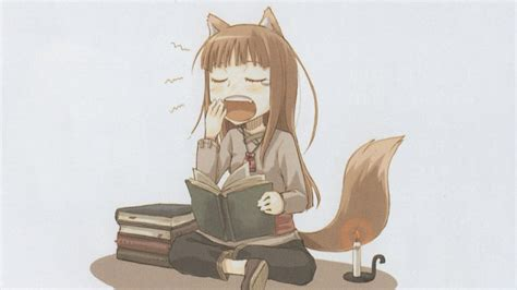 Spice And Wolf Vol 14 Light Novel spice wolf vol 1 5 light novel series review part