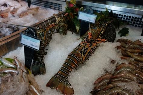 Maianan Animal Kingdom best food spots in chennai for authentic seafood the