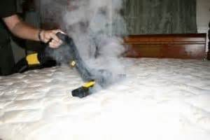 steam bed bugs bed bug steamer bed bug treatment site