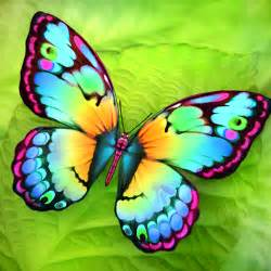 butterfly pictures to paint paint me a butterfly mobile app the best mobile app awards